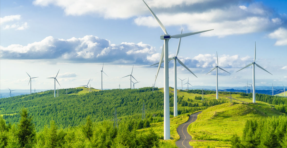 Environmental Stewardship: A Core Value